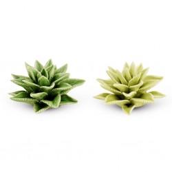 Cactus vert en porcelaine